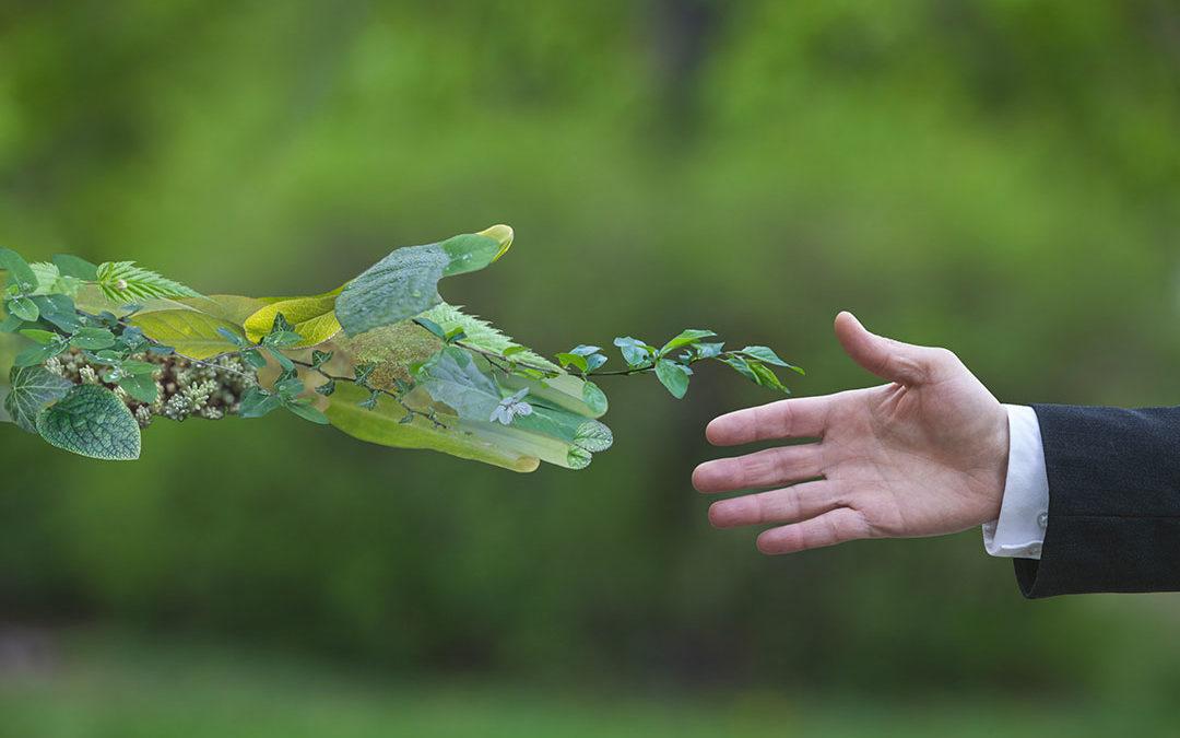 Economia ed ecologia sono diventati indissociabili